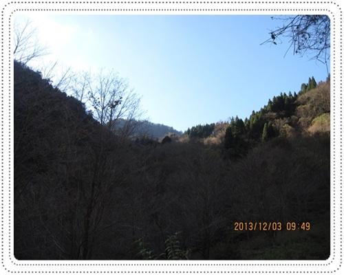 f0193521_1251549.jpg