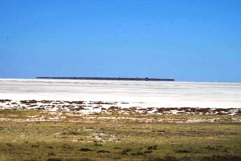 ナミビアの旅(38) エトーシャ国立公園のサファリドライブ(2)_c0011649_5563482.jpg