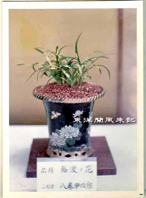 大阪万国博覧会(昭和45年)             No.1347_d0103457_1475821.jpg