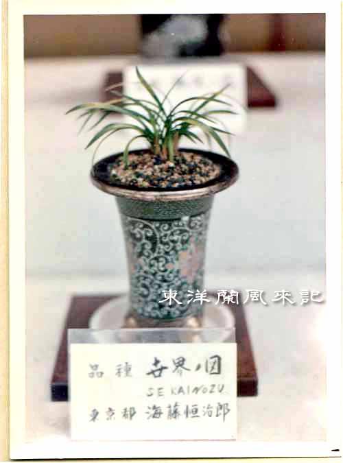 大阪万国博覧会(昭和45年)             No.1347_d0103457_1482390.jpg