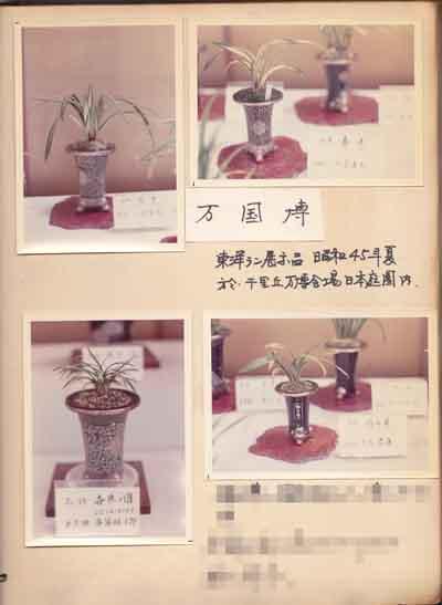 大阪万国博覧会(昭和45年)             No.1347_d0103457_9422316.jpg