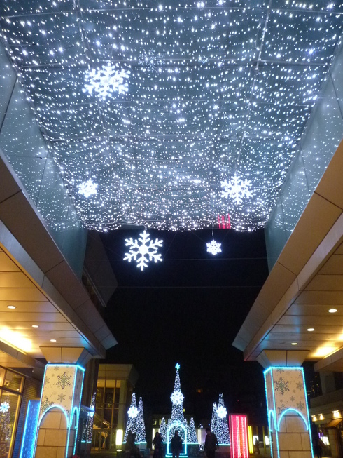 THE FIRST NOEL  夜空に瞬く星座のした。。。冬の夜は 静かに静かに更けていき☆⊹⊱..☆*:.。.☆*†_a0053662_22353638.jpg