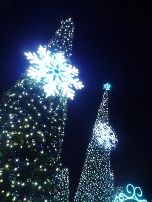 THE FIRST NOEL  夜空に瞬く星座のした。。。冬の夜は 静かに静かに更けていき☆⊹⊱..☆*:.。.☆*†_a0053662_2238257.jpg