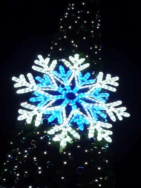 THE FIRST NOEL  夜空に瞬く星座のした。。。冬の夜は 静かに静かに更けていき☆⊹⊱..☆*:.。.☆*†_a0053662_2239031.jpg