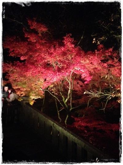 名古屋・京都高島屋さんストウブイベント終了!_b0165178_161894.jpg