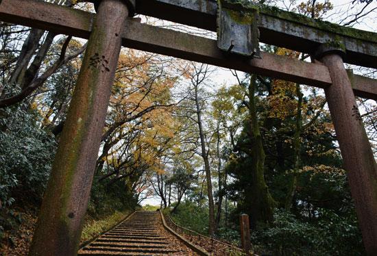 奥卯辰山健民公園(秋模様5)_c0093046_650224.jpg