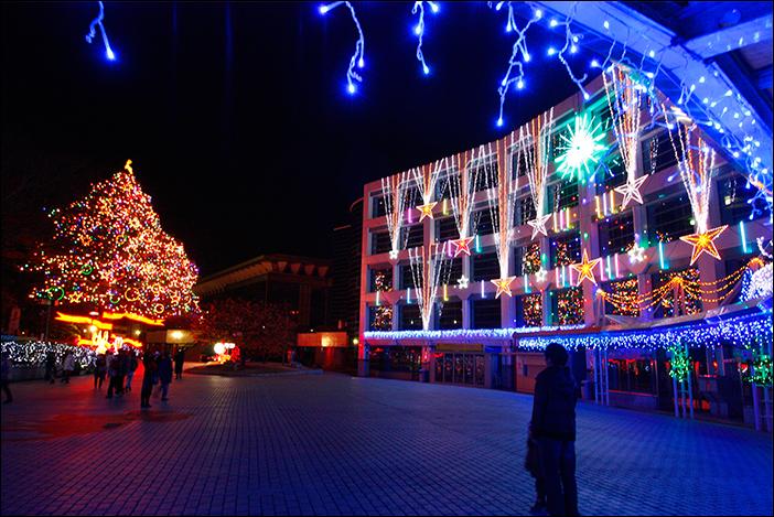 クリスマスがやってきた_f0154850_10404992.jpg