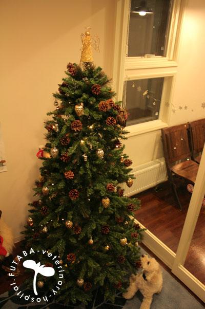 クリスマスツリー_a0244751_15435536.jpg