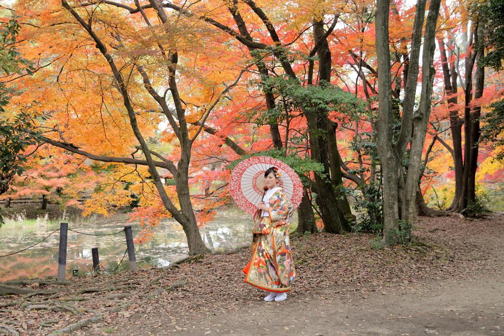 紅葉 2013 <京都府立植物園>          _f0021869_23102410.jpg