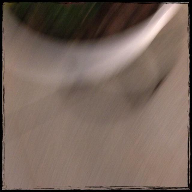 f0100480_19372329.jpg