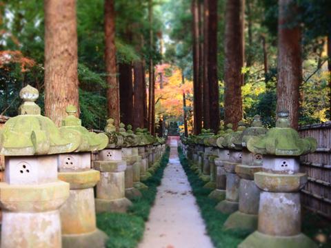 再び、平林寺へ_e0124597_21211127.jpg