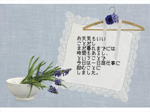 b0307008_1227479.jpg