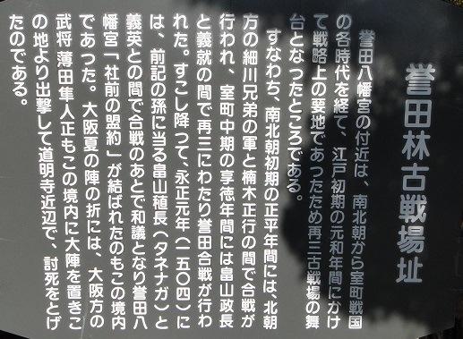 f0000521_20222525.jpg
