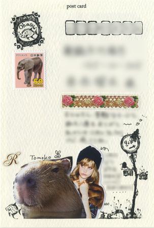 カード文通 むにゅさんへ ごちゃっとしたカード_a0275527_23494675.jpg