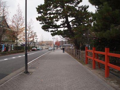 京都「八重の桜」巡り・その3_d0079440_18465372.jpg
