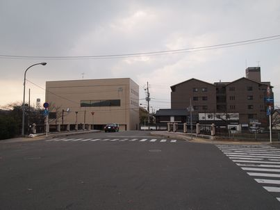京都「八重の桜」巡り・その3_d0079440_18575015.jpg