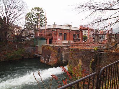 京都「八重の桜」巡り・その3_d0079440_19185083.jpg