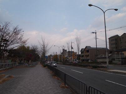 京都「八重の桜」巡り・その3_d0079440_19241275.jpg