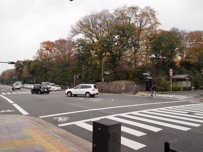 京都「八重の桜」巡り・その3_d0079440_19414178.jpg