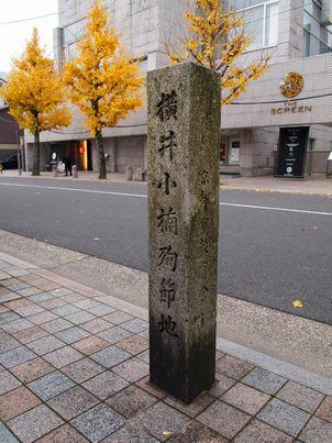 京都「八重の桜」巡り・その3_d0079440_19502470.jpg