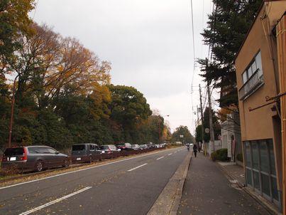 京都「八重の桜」巡り・その3_d0079440_19522389.jpg