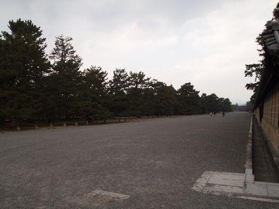 京都「八重の桜」巡り・その3_d0079440_20251914.jpg