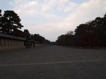 京都「八重の桜」巡り・その3_d0079440_2036333.jpg