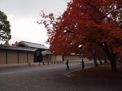 京都「八重の桜」巡り・その3_d0079440_20505499.jpg