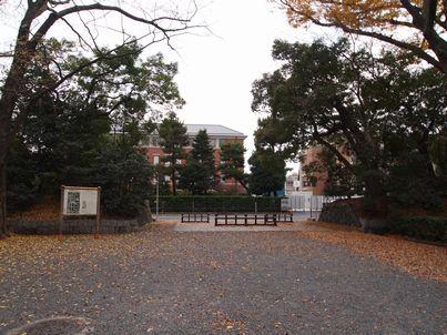 京都「八重の桜」巡り・その3_d0079440_20552863.jpg