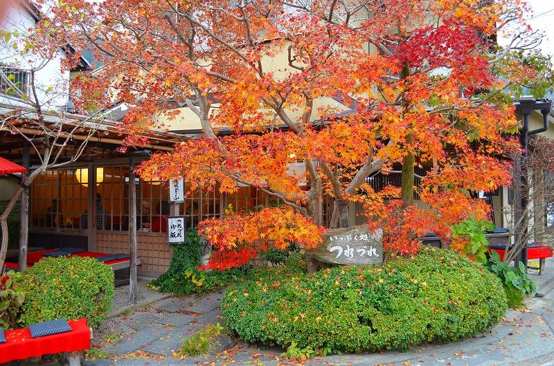 秋も深まり紅葉も終わりに近づいた『嵯峨野』を散策_e0237645_22253149.jpg