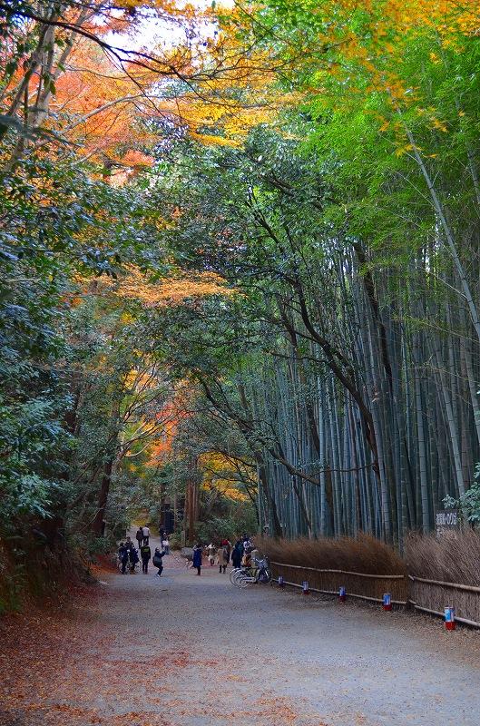 秋も深まり紅葉も終わりに近づいた『嵯峨野』を散策_e0237645_2226744.jpg
