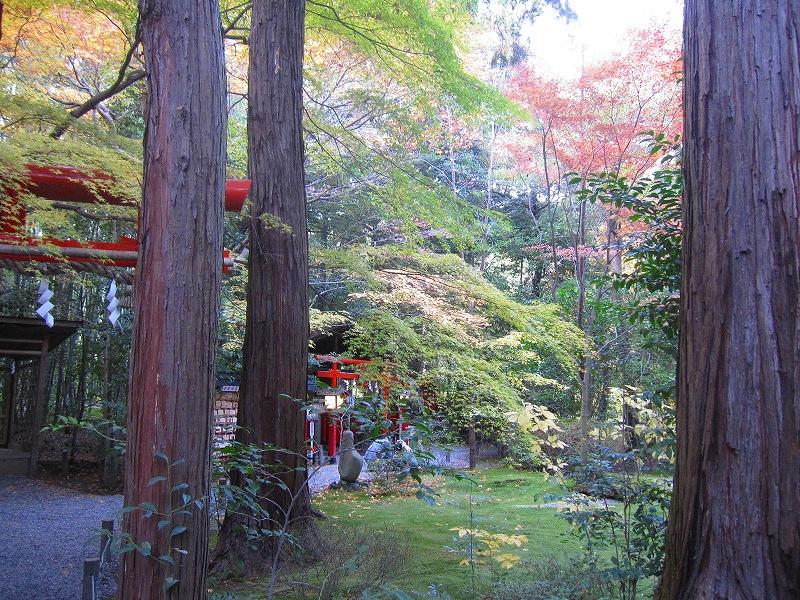 秋も深まり紅葉も終わりに近づいた『嵯峨野』を散策_e0237645_22274415.jpg