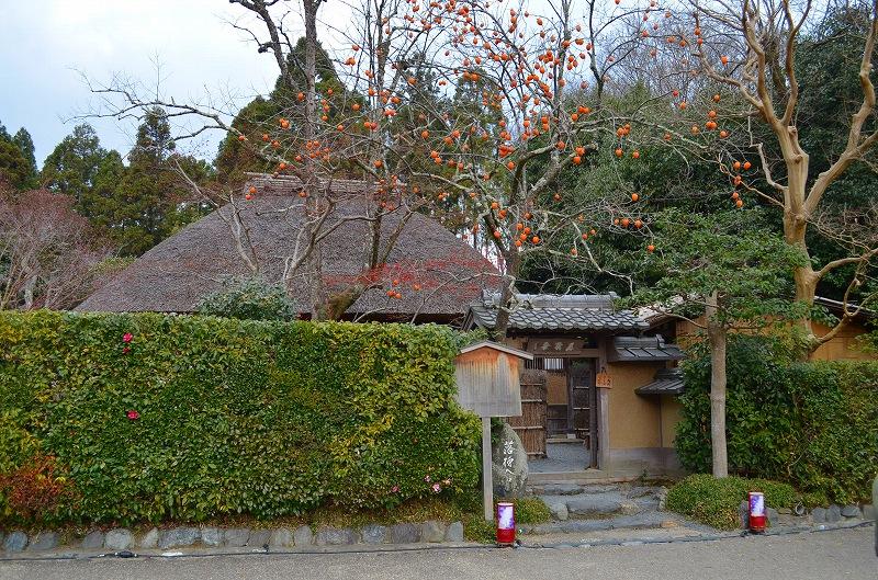 秋も深まり紅葉も終わりに近づいた『嵯峨野』を散策_e0237645_22284037.jpg