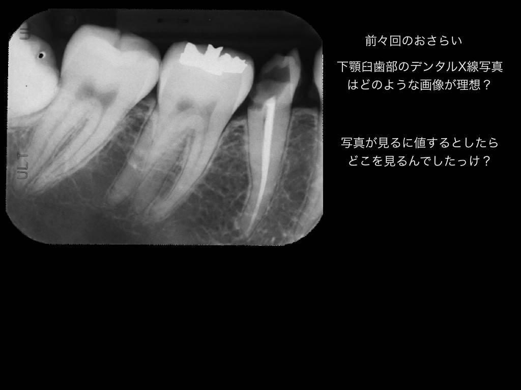 b0112648_1848459.jpg