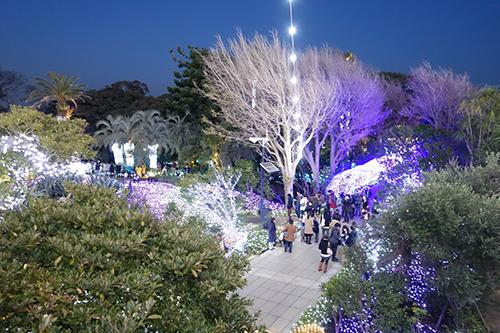 2013江の島イルミネーション_e0174913_1702126.jpg