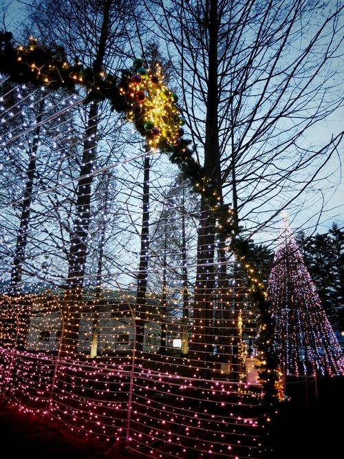 2013☆イルミネーション巡り⑦矢ヶ崎公園~グランドエクシブ軽井沢_f0236260_1835440.jpg