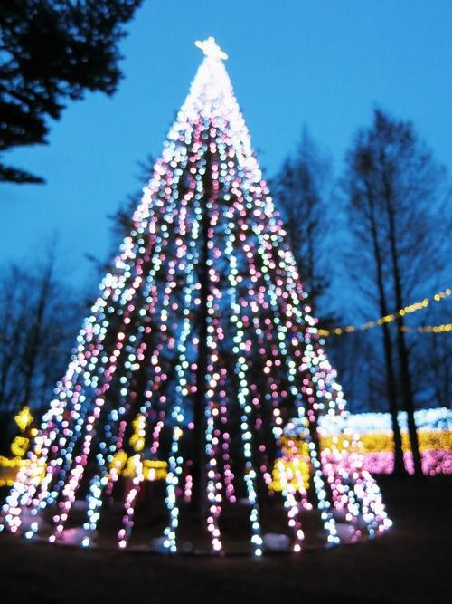 2013☆イルミネーション巡り⑦矢ヶ崎公園~グランドエクシブ軽井沢_f0236260_1864070.jpg