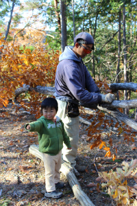 椎茸木を切る_b0141264_2319353.jpg