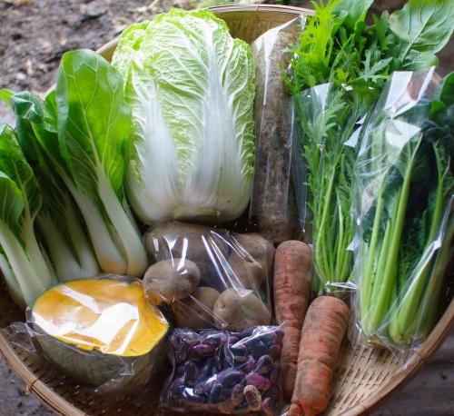 今週の野菜セット(12/10~12/14着)_c0110869_14383461.jpg