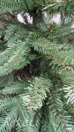 シックなポット入りクリスマスツリー_f0029571_11142843.jpg