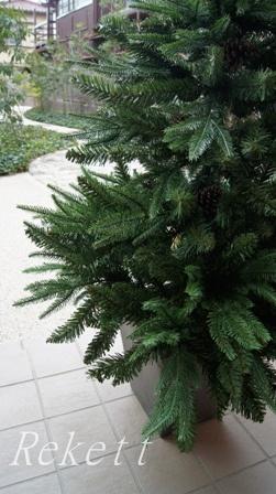 シックなポット入りクリスマスツリー_f0029571_11153994.jpg