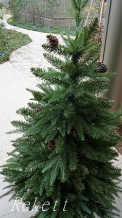 シックなポット入りクリスマスツリー_f0029571_1115550.jpg