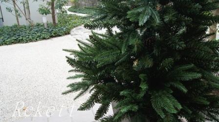 シックなポット入りクリスマスツリー_f0029571_11155571.jpg