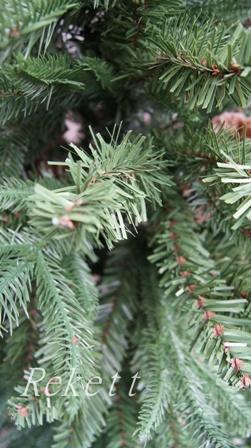 シックなポット入りクリスマスツリー_f0029571_112123100.jpg