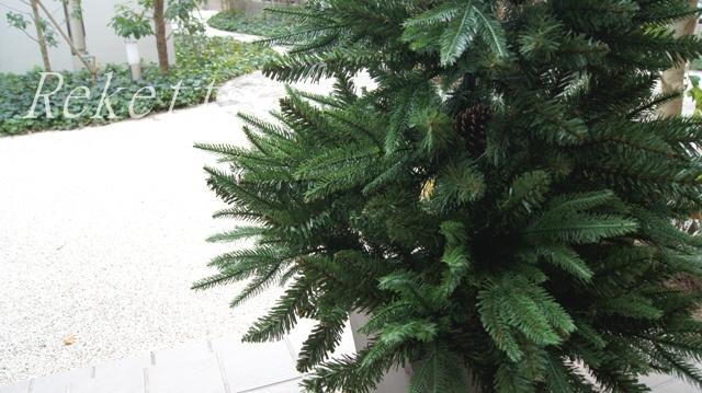 シックなポット入りクリスマスツリー_f0029571_11214646.jpg
