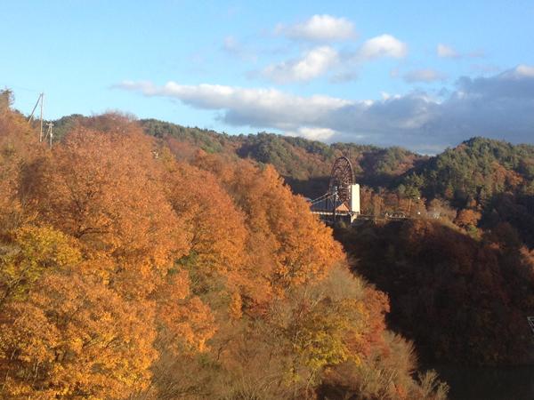 大きな秋 と 本格絵付け_e0114296_93422.jpg