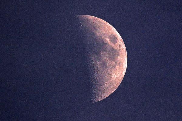 久しぶりにホオアカ/カワラヒワ/初夏のカワセミ/雲を通して月_b0024798_183690.jpg