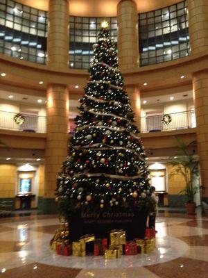 クリスマスツリー_f0316481_2091147.jpg
