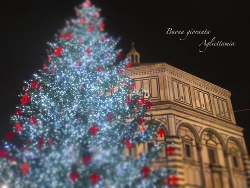 キラキラDUOMO のクリスマスツリー★あんな角度、こんな角度から_c0179785_443488.jpg