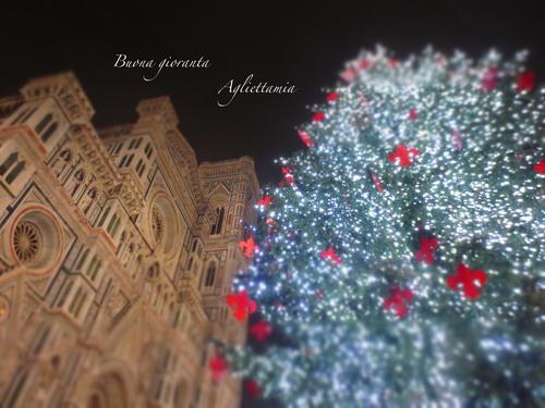 キラキラDUOMO のクリスマスツリー★あんな角度、こんな角度から_c0179785_45945.jpg